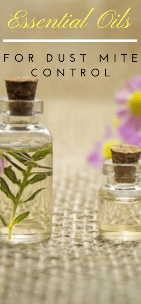 essential oils to kill dust mites - control