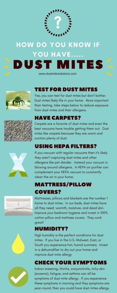 how do you know if you have dust mites