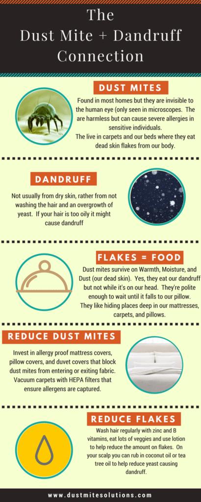 Do Dust Mites Eat Dandruff