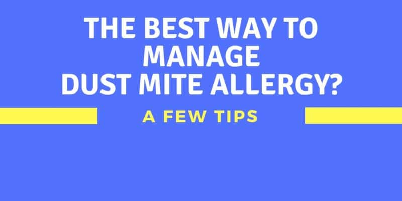 best way to manage dust mite allergy tips