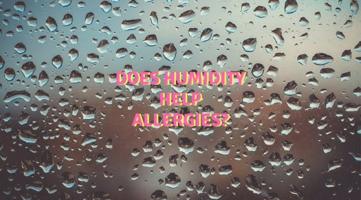 Does humidity help allergies