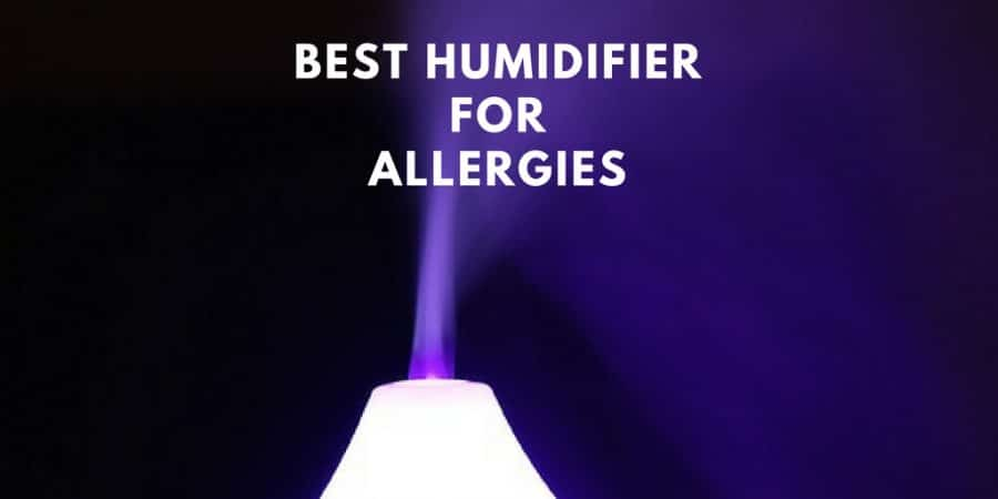 best humidifier for allergies, babies and adults