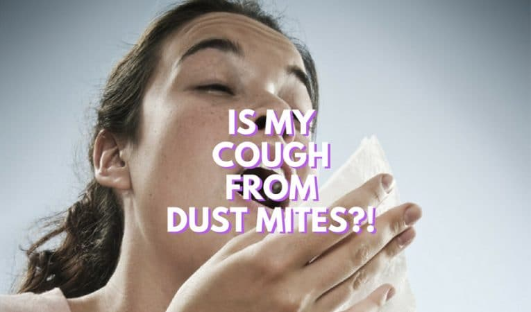dust mite allergy and chronic cough