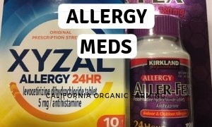 Best allergy medication
