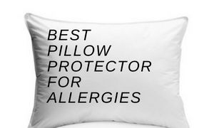 Best Pillow Protection For Dust Mite Allergies