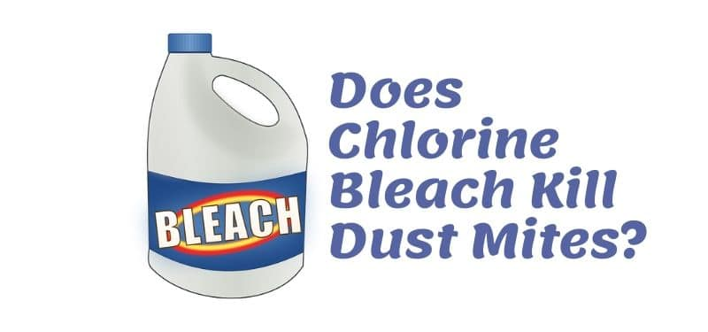 Chlorine bleach kill dust mites